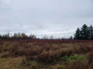 Photo 18: 17915 FORD ROAD DETOUR in Pitt Meadows: West Meadows House for sale : MLS®# R2519795
