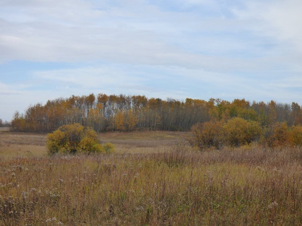 Photo 24: Photos: N1/2 SE19-57-1-W5: Rural Barrhead County Rural Land/Vacant Lot for sale : MLS®# E4217154