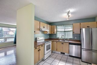 Photo 13: 80 Aberfoyle Close NE in Calgary: Abbeydale Detached for sale : MLS®# A1137613