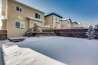 Photo 32: 2378 Reunion Street NW: Airdrie Detached for sale : MLS®# A1067245