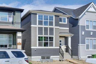 Photo 47: 77 Corner  Ridge Mews NE in Calgary: Cornerstone Detached for sale : MLS®# A1116655
