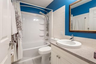 Photo 19: 3137 Doverville Crescent SE in Calgary: Dover Semi Detached for sale : MLS®# A1050547