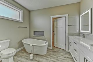 Photo 29: 114 SPEARGRASS Close: Carseland Detached for sale : MLS®# A1089929