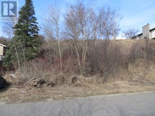 Photo 3: 2653 JASPER STREET in Prince George: Vacant Land for sale : MLS®# R2564606