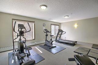 Photo 47: 201 4407 23 Street in Edmonton: Zone 30 Condo for sale : MLS®# E4254389