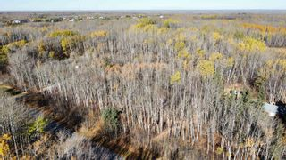 Photo 24: 15 54023 RGE RD 280: Rural Parkland County Rural Land/Vacant Lot for sale : MLS®# E4266505