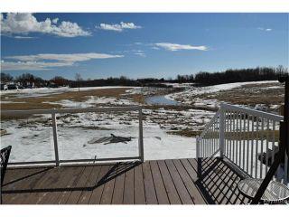 Photo 18: 98 La Porte Drive in Winnipeg: St Norbert Residential for sale (1Q)  : MLS®# 1705880