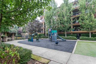"""Photo 23: 523 8288 207A Street in Langley: Willoughby Heights Condo for sale in """"Yorkson Creek Walnut Ridge 2"""" : MLS®# R2546058"""