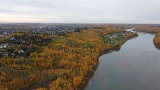 Photo 8: 17303 23 Avenue NW: Edmonton Commercial Land for sale : MLS®# A1153359
