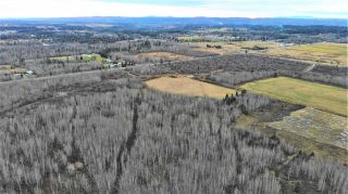 Photo 19: 5675 BLACKBURN Road in Prince George: Pineview Land Commercial for sale (PG Rural South (Zone 78))  : MLS®# C8034975