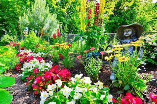 Photo 35: 101 1485 Garnet Rd in Saanich: SE Cedar Hill Condo for sale (Saanich East)  : MLS®# 839562