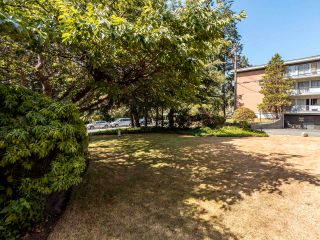 """Photo 28: 305 7171 BERESFORD Street in Burnaby: Highgate Condo for sale in """"MIDDLEGATE TOWERS"""" (Burnaby South)  : MLS®# R2600978"""