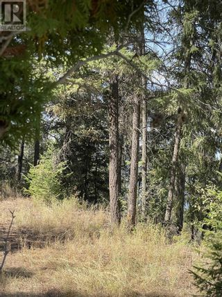 Photo 9: 1803 SOUTH LAKESIDE DRIVE in Williams Lake: Vacant Land for sale : MLS®# R2612495