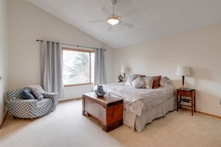 Photo 31: 160 Mt Robson Circle SE in Calgary: McKenzie Lake Detached for sale : MLS®# A1099361