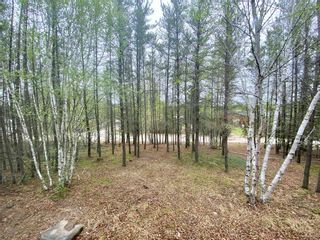 Photo 28: 29 Lot Block 1 Plan 9953 Road in Wallace Lake: R28 Residential for sale : MLS®# 202113671