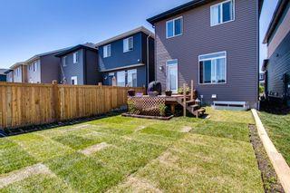 Photo 23: 2043 160 Street in Edmonton: Zone 56 House for sale : MLS®# E4251377
