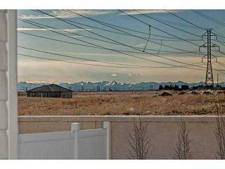 Photo 20: 113 Rainbow Falls Boulevard: Chestermere House for sale : MLS®# C3656518