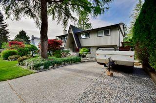 Photo 6: 20801 MCFARLANE Avenue in Maple Ridge: Southwest Maple Ridge House for sale : MLS®# R2065058