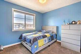 Photo 25: 144 Cornerstone Avenue NE in Calgary: Cornerstone Semi Detached for sale : MLS®# A1116950