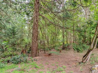 Photo 24: 1020 Readings Dr in : NS Lands End House for sale (North Saanich)  : MLS®# 875067