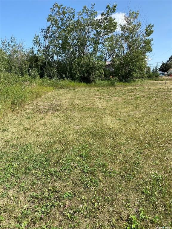 Main Photo: 213 Willow Street in Kelvington: Lot/Land for sale : MLS®# SK866610