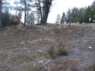 Photo 25: Lot 6 SWANSEA ROAD in Invermere: Vacant Land for sale : MLS®# 2457554
