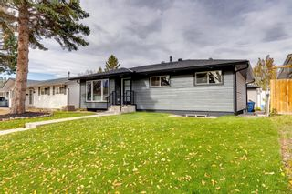 Photo 48: 87 Armstrong Crescent SE in Calgary: Acadia Detached for sale : MLS®# A1152498