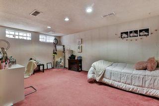 Photo 23: 35 Abergale Close NE in Calgary: Abbeydale Detached for sale : MLS®# C4267496