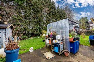 Photo 10: 32031 JOYCE Avenue in Abbotsford: Abbotsford West House for sale : MLS®# R2563177