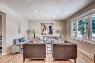 Photo 21: 7412 FARRELL Road SE in Calgary: Fairview Detached for sale : MLS®# A1062617