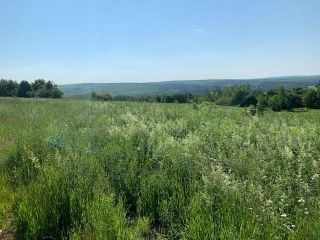Photo 1: 126 Victoria Street in Springhill: 102S-South Of Hwy 104, Parrsboro and area Vacant Land for sale (Northern Region)  : MLS®# 202116581