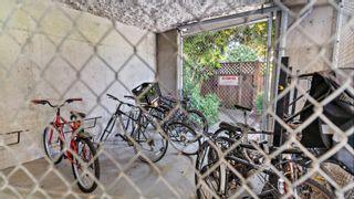 Photo 26: 401 1615 Bay St in : Vi Fernwood Condo for sale (Victoria)  : MLS®# 878139