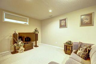 Photo 35: 59 TARINGTON Close NE in Calgary: Taradale Detached for sale : MLS®# C4216130