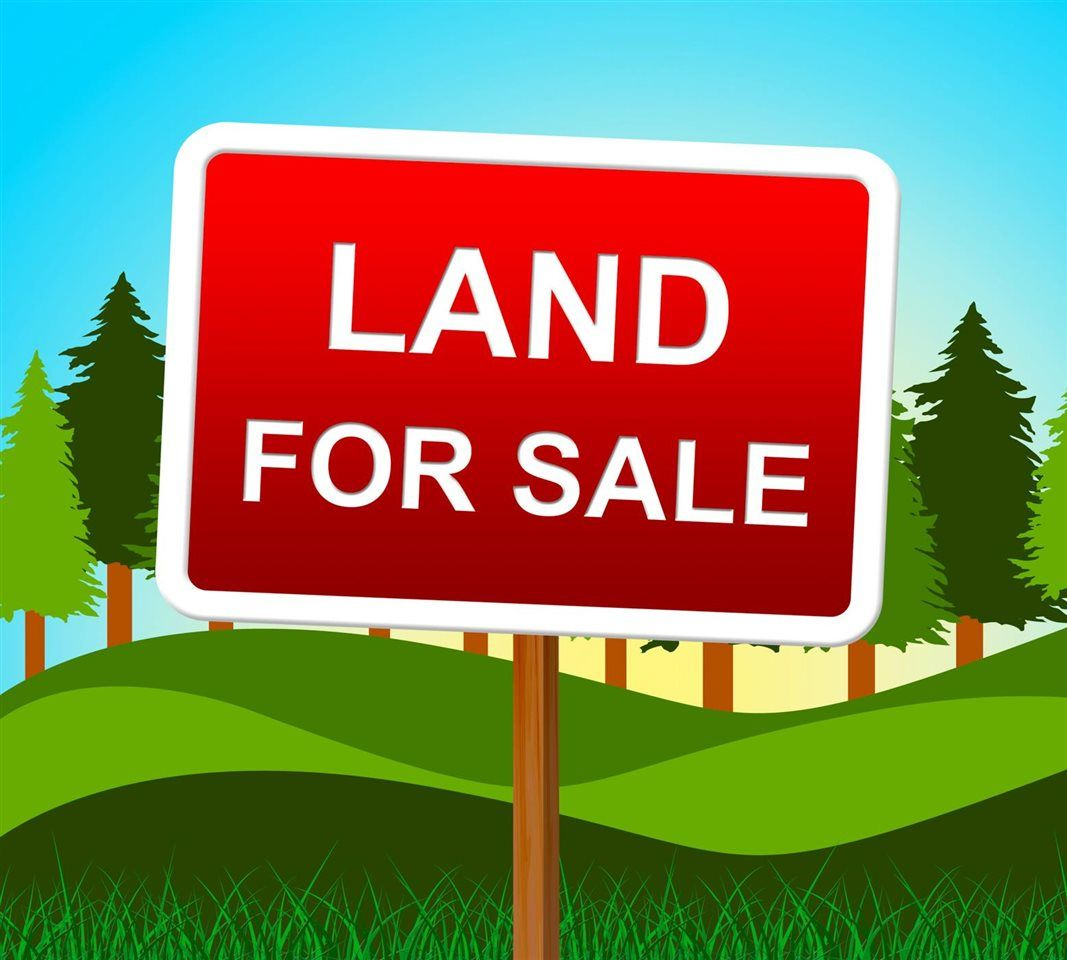 Main Photo: Lot 4 WILLIAMS Landing in Pitt Meadows: North Meadows PI Land for sale : MLS®# R2592453