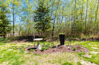 Photo 25: 63010B Rge Rd 412: Rural Bonnyville M.D. House for sale : MLS®# E4239336