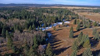 Photo 14: 20.02 Acres +/- NW of Cochrane in Rural Rocky View County: Rural Rocky View MD Land for sale : MLS®# A1065950