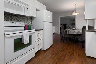 Photo 14: 11 MOUNT ROYAL Drive: St. Albert House for sale : MLS®# E4257349