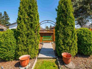 Photo 33: 4516 217A Street in Langley: Murrayville House for sale : MLS®# R2570732