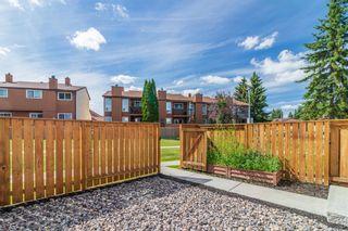 Photo 31: 18451 66 Avenue in Edmonton: Zone 20 Townhouse for sale : MLS®# E4251985