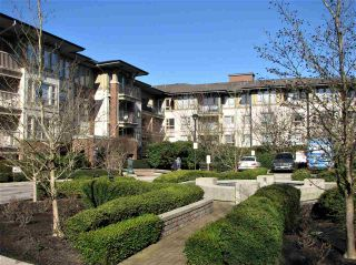 """Photo 15: 5303 5111 GARDEN CITY Road in Richmond: Brighouse Condo for sale in """"LIONS PARK"""" : MLS®# R2438425"""