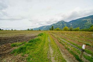 Photo 37: 5111 TOLMIE Road in Abbotsford: Sumas Prairie House for sale : MLS®# R2573312