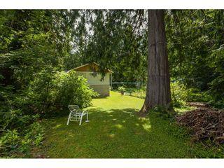 Photo 34: 26027 112 Avenue in Maple Ridge: Thornhill MR House for sale : MLS®# R2476121