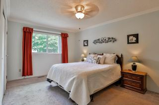 Photo 13: 9295 151A Street in Surrey: Fleetwood Tynehead House for sale : MLS®# R2097594