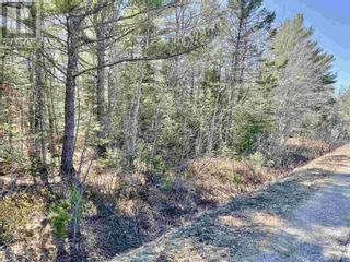 Photo 9: Lot 3 Highway 8 in Harmony: Vacant Land for sale : MLS®# 202108277