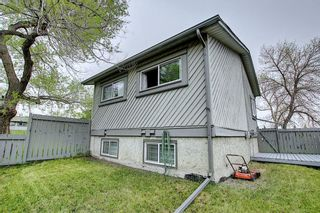 Photo 36: 49 12 Templewood Drive NE in Calgary: Temple Row/Townhouse for sale : MLS®# C4299149