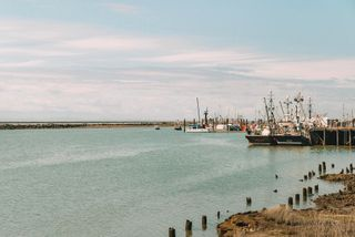 """Photo 33: 109 4233 BAYVIEW Street in Richmond: Steveston South Condo for sale in """"The Village"""" : MLS®# R2616762"""