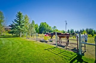 Photo 50: 3421 85 Street SW in Calgary: Springbank Hill Detached for sale : MLS®# A1153058