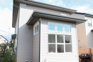 Photo 45: 9764 221 Street in Edmonton: Zone 58 House for sale : MLS®# E4262702