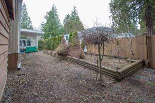"""Photo 13: 206 1830 MAMQUAM Road in Squamish: Garibaldi Estates Manufactured Home for sale in """"Timbertown"""" : MLS®# R2143638"""