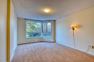Photo 29: 201 2425 90 Avenue SW in Calgary: Palliser Apartment for sale : MLS®# A1052664